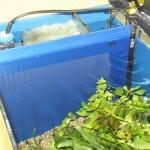 Bild: Neueinrichtung eines Aquariums (2006) / Ein von Arnold Design Aquarien entwickelt und nachträglich eingebauter Dreikammerfilter in einem 96 Liter Juwel Aquarium mit nun 12 Liter Filtervolumen (2006).