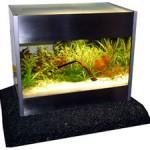 """Bild: Editorial / Arnold Design Aquarium """"Squaredance volume ONE"""" der allererste Prototyp und Urvater aller nachfolgenden Aquarien im eingerichtetem Zustand. Die Bepflanzung ist perfekt auf die Größe des Aquariums abgestimmt. Miniaturisierung heißt das Zauberwort."""