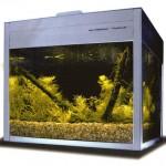Bild: Foxtrott volume ONE (2005). Dieser dritte Prototyp entstand 2005 und steht noch heute im eingerichteten Zustand direkt neben meinem Schreibtisch. Die Funktion ist tadellos - ohne Ausfälle. Arnold Design Aquarien vereinen Technologie mit tollem Design.