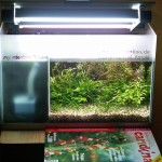 """Bild: Arnold Design Aquarium """"Foxtrott volume TWO"""" (2005) mit leicht geöffnetem Beleuchtungsmodul. Die Lichtmenge spricht Bände."""