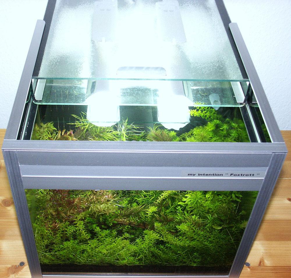 der wunsch nach individualit t trifft auf technologie und abenteuer arnold design aquarien. Black Bedroom Furniture Sets. Home Design Ideas