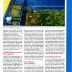 Bild: Pressemitteilungen / Aquarium Live Oktober / November 2007 - Die Magie der kleinen Naturaquarien. Text und Fotos Erik Maik Arnold