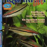 Bild: Pressemitteilungen / Aquarium Live Dezember 2007/ Januar 2008 - Ein Aquarium tunen - Mehr Licht ins Dunkel - Text und Fotos - Erik Maik Arnold.