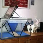 """Bild: Die Bepflanzung / Das Design Aquarium ,,Mecklenburg-Vorpommern"""" (2006) nach meinem Umzug in Güstrow. http://www.svz.de/lokales/guestrower-anzeiger/aquarien-weltneuheit-aus-guestrow-id5884121.html"""