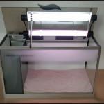 Bild: Das Licht aus dem Aquariuminneren / Foxtrott Emotion volume FOUR (2006) mit aufgeklappten Beleuchtungsmodul. 2 x 14 Watt Arcadia Freshwater sorgen hier für eine ausgewogene Beleuchtung.