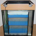 Bild: Glasaquarium mit Lichtkastenumrandung und strukturiertem Innenfiltersystem